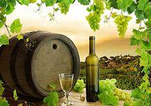 vino-italii