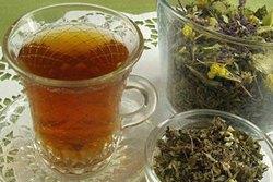 koporskii-chai